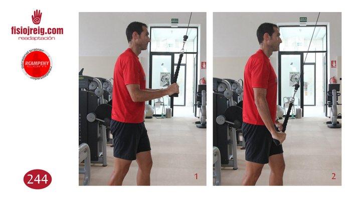 Tonificación de tríceps cuerda en polea