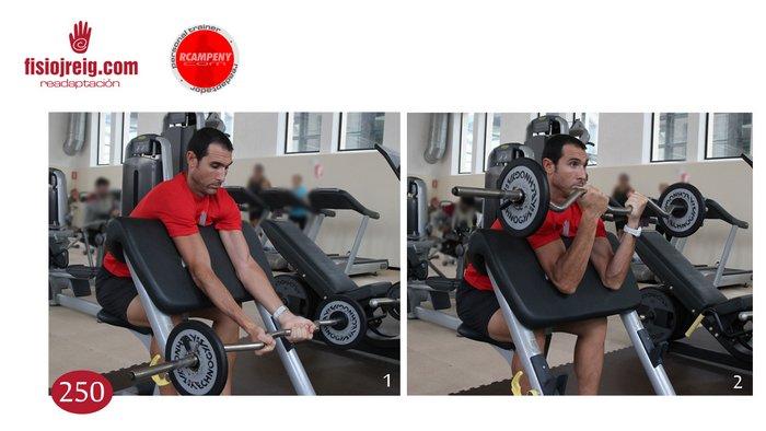 Potenciación biceps barra z