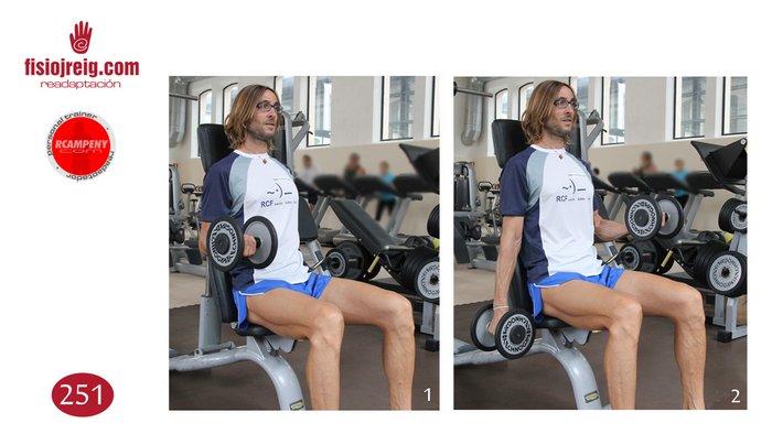 Trabajo de biceps sentado mancuerna