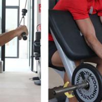 entrenar todos los grupos musculares